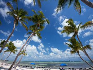 Paradise Ocean View C426 at 1800