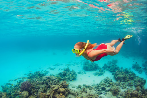 Go snorkeling on your Key West Vacation