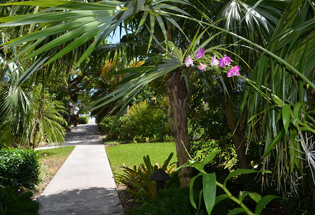 Garden walkways 1800 Atlantic Blvd 200A, Key West, FL 33040