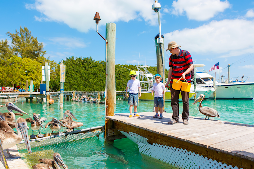 Florida Keys Family Vacation: The Ultimate Activity Guide