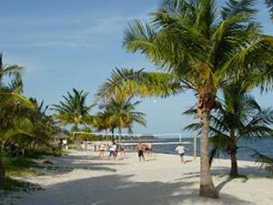 Key West Paradise Found Unit C430